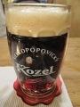 Praha_Restaurant1 (4)
