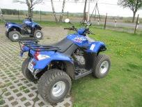 quad (3)